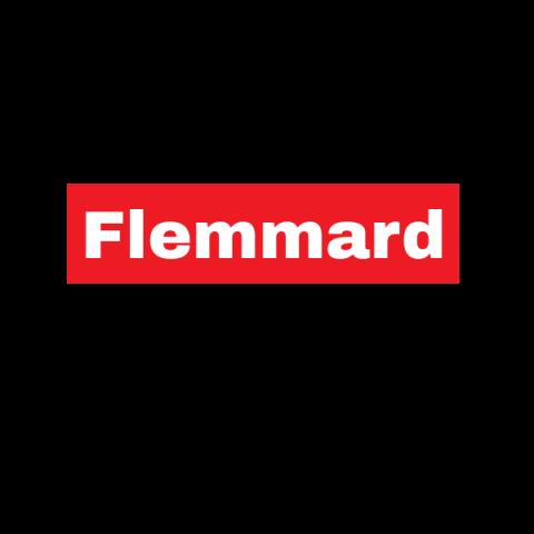 Flemmard